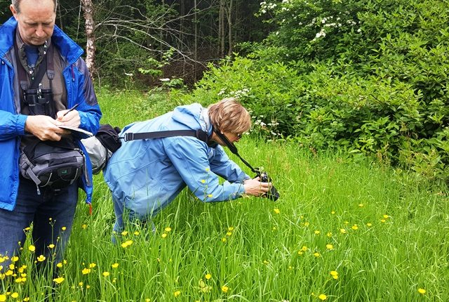 A participant on the NatureSpot training taking a close up photograph of a flower