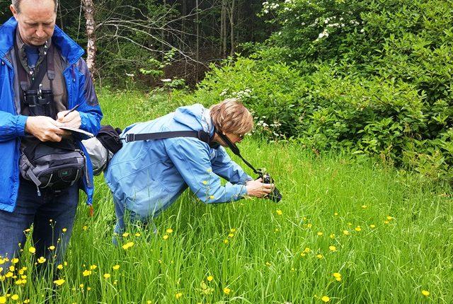 NatureSpot Training