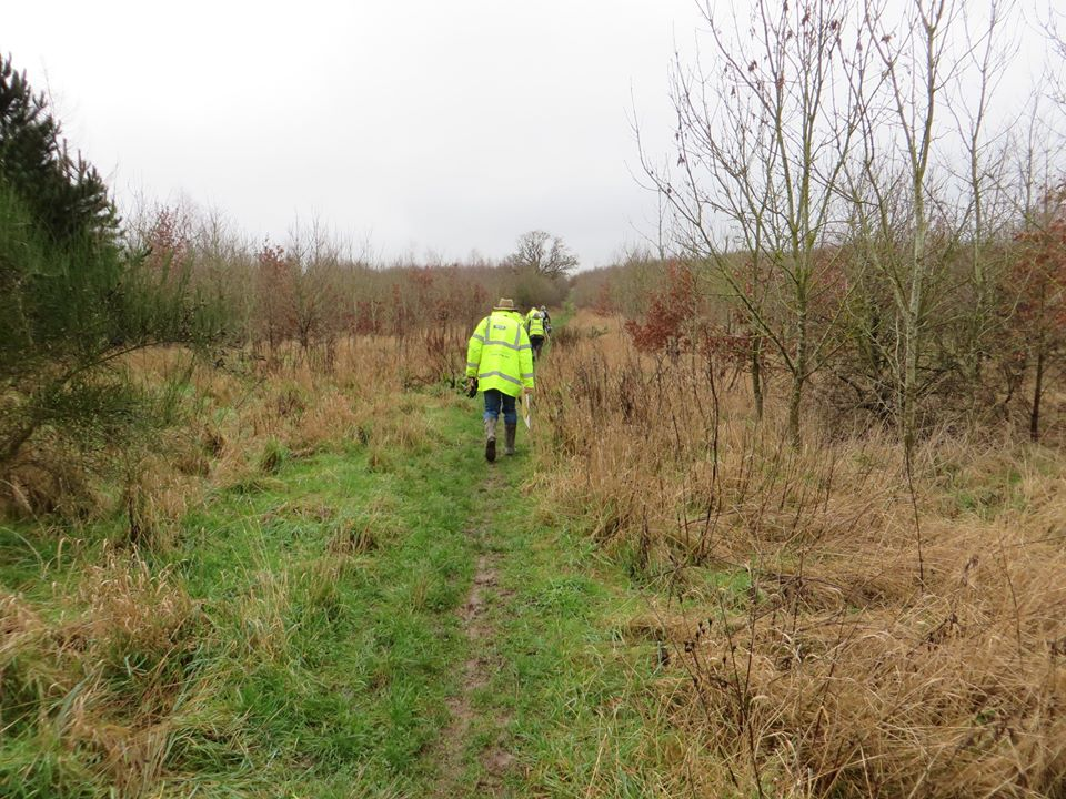 Backs of participants in high vis jackets walking along path carrying tools