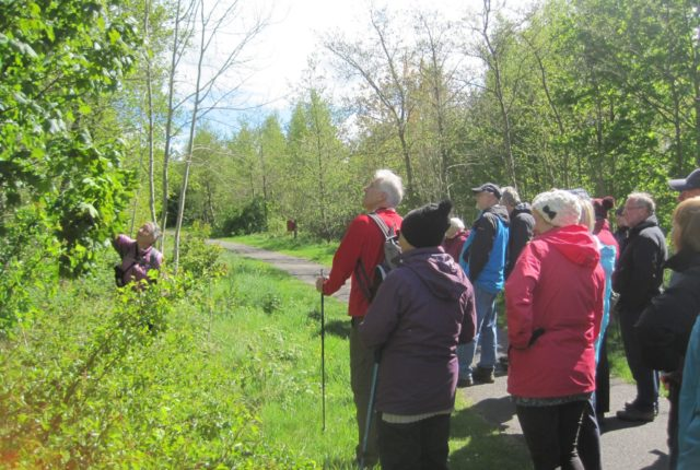 Launch of Swadlincote Woodland Nature Trail