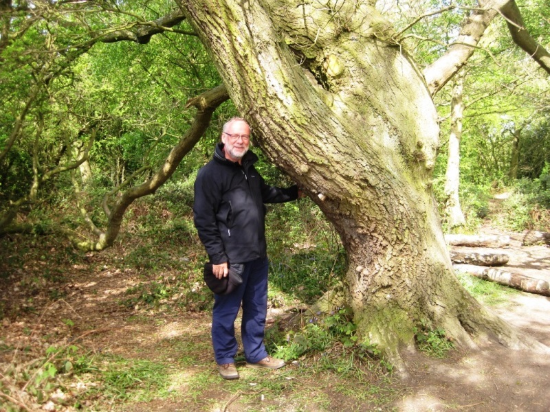 John Swanwick standing next to an oak tree