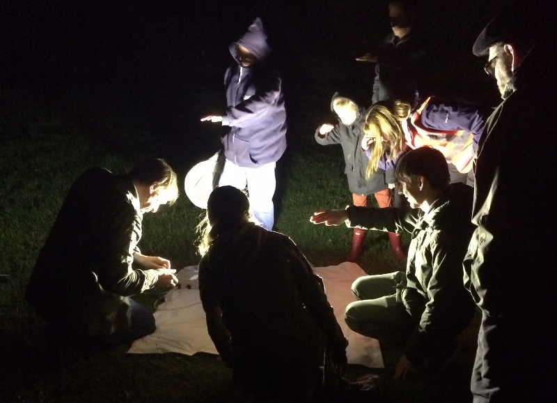 Group crowded round a moth trap in the dark