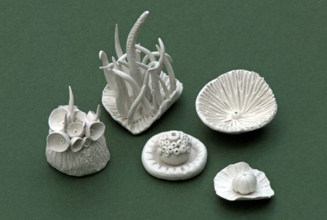 Miniature clay models inspired by lichen and plants