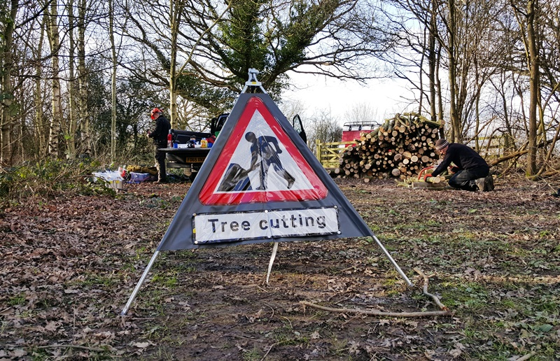 Pjoto of a warning Tree Cutting sign in a woodland